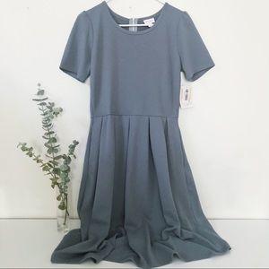 NWT LuLaRoe Gray Amelia A-Line Textured Dress